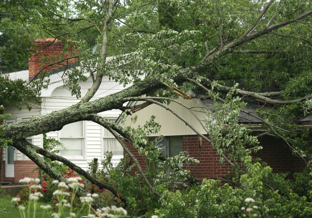 Storm Damage Repair West Palm Beach